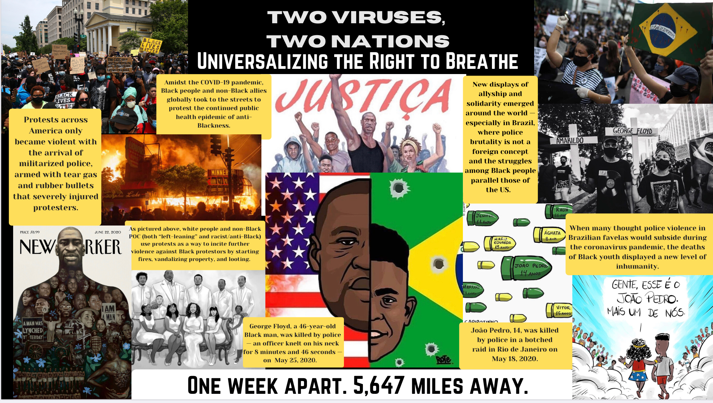 5.1 Two Viruses, Two Nations: Universalizing the Right to Breathe
