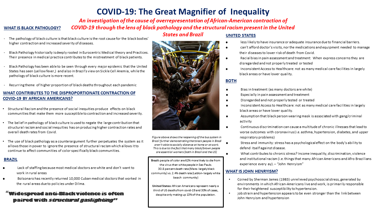 5.3 COVID-19: The Great Magnifier of Inequality